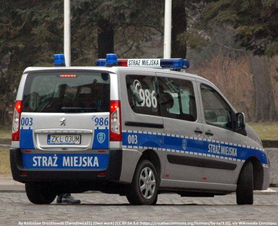 SM Żyrardów:  11.02.2019-18.02.2019